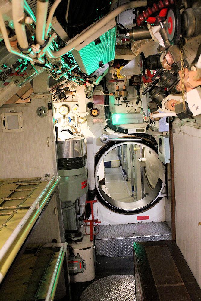 HMSOcelot2.jpg