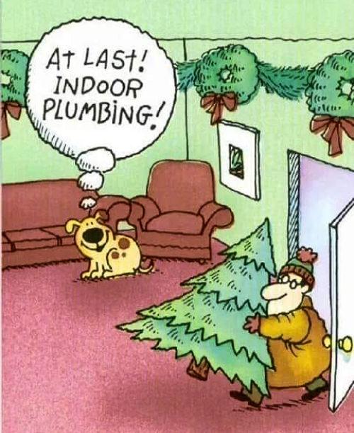 indoorplumbing.jpg