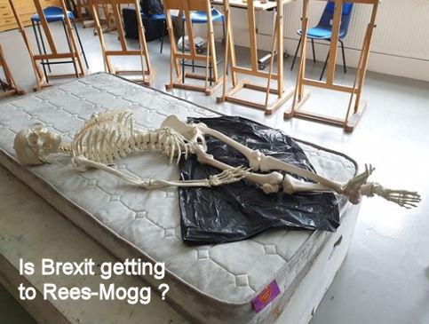 Rees-Moggy.jpg